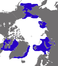 Walrus Arctic Ocean Distribution Map