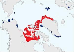 Muskox distribution map