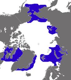 Walrus Arctic Ocean Distribution Map